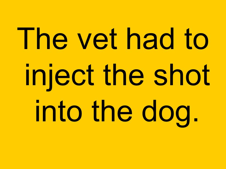 The vet had to inject the shot into the dog.