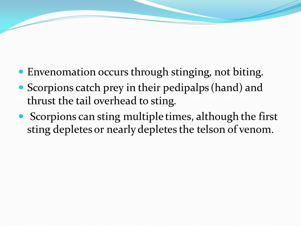 Envenomation occurs through stinging, not biting.