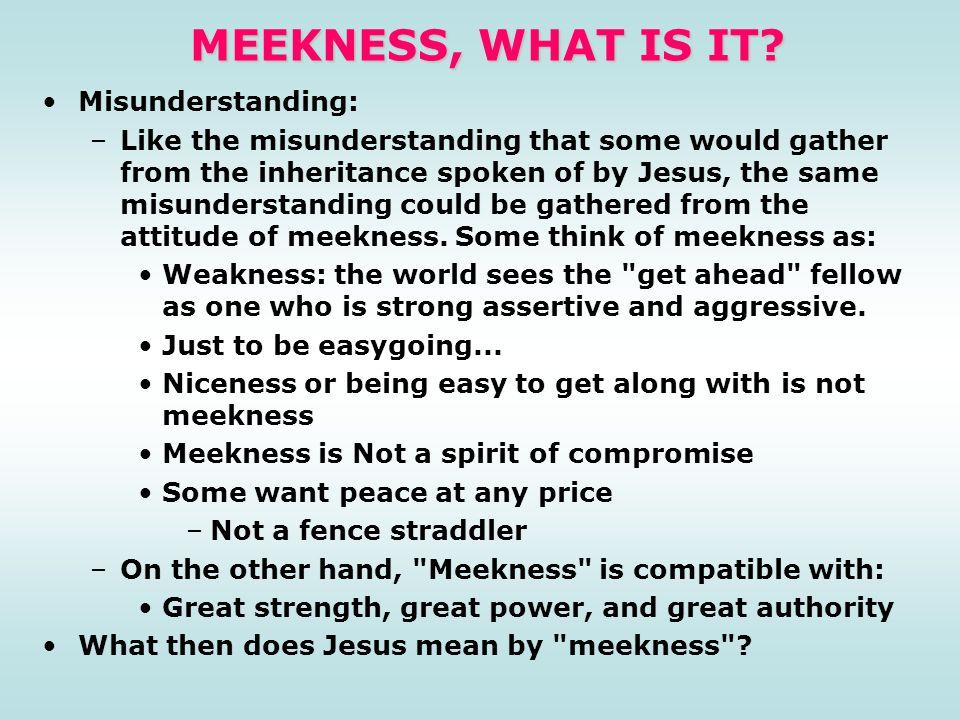 MEEKNESS, WHAT IS IT Misunderstanding: