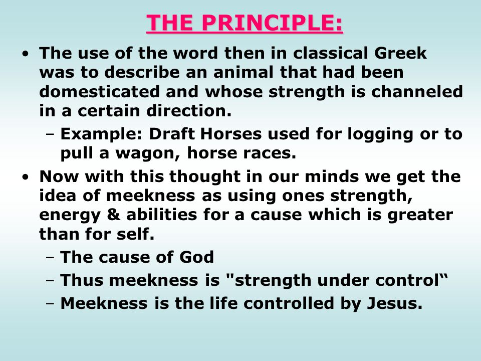 THE PRINCIPLE: