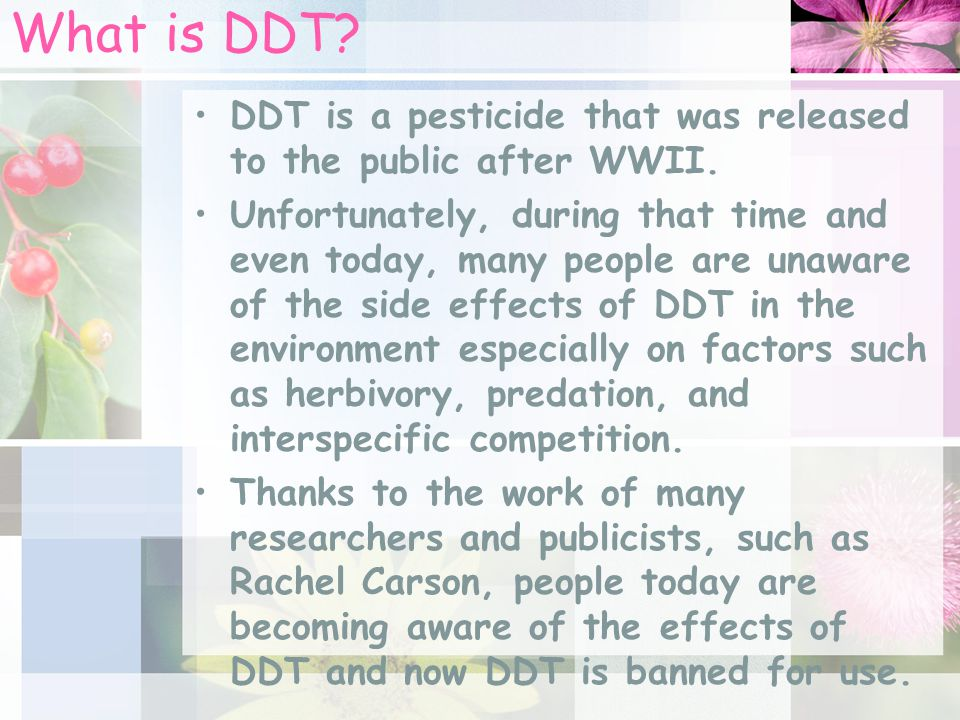 What is DDT DDT is a pesticide that was released to the public after WWII.