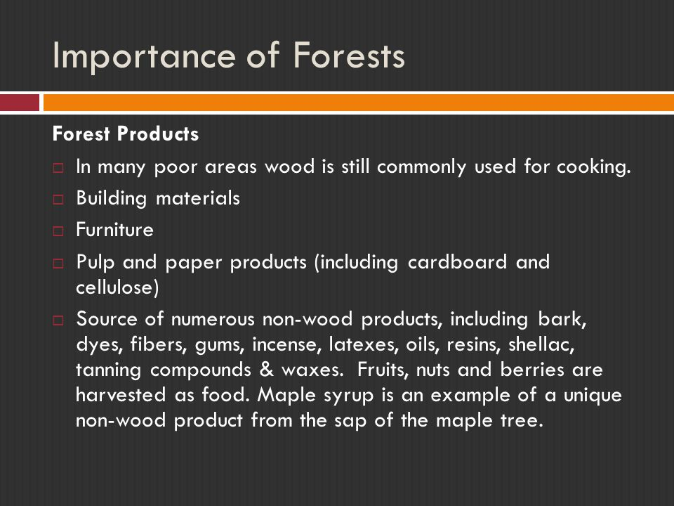 Importance of Forests Forest Products