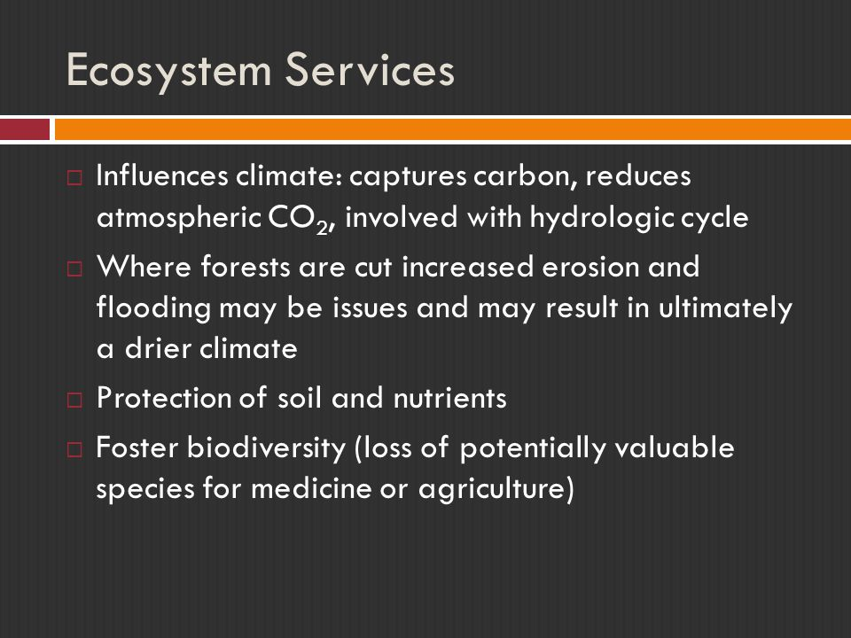 Ecosystem Services Influences climate: captures carbon, reduces atmospheric CO2, involved with hydrologic cycle.