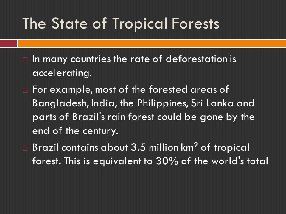 The State of Tropical Forests