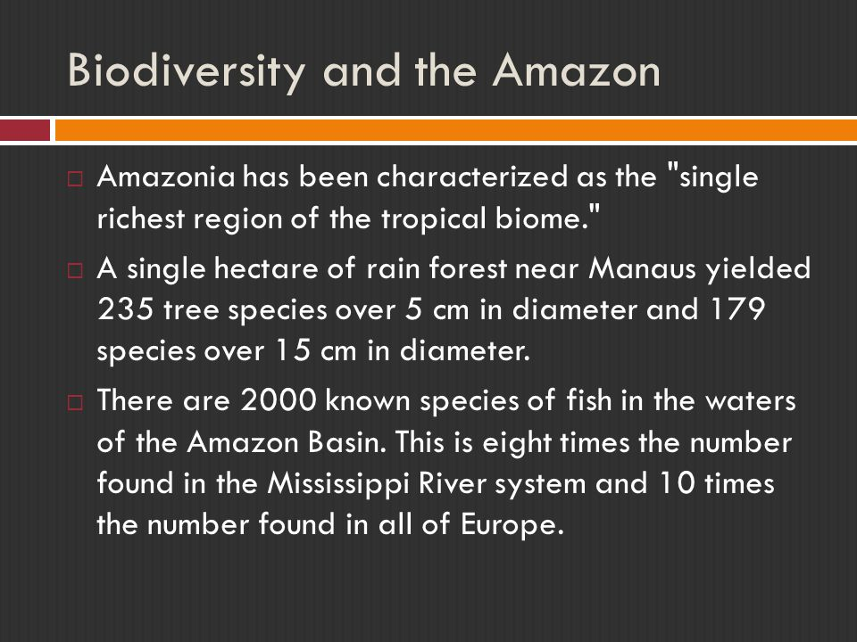 Biodiversity and the Amazon