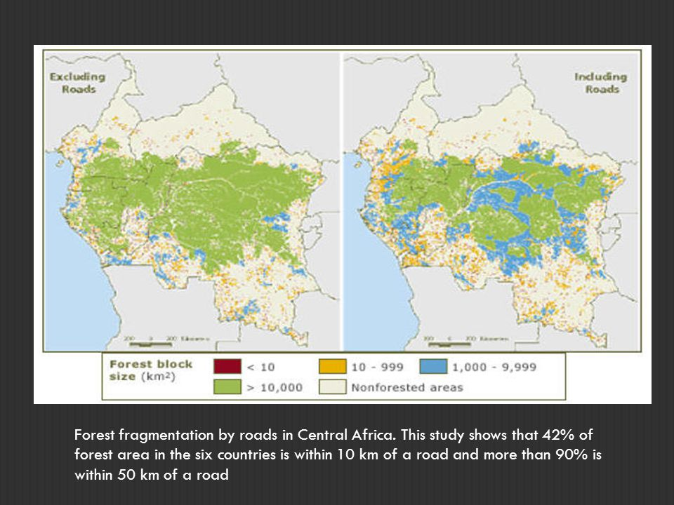 Forest fragmentation by roads in Central Africa