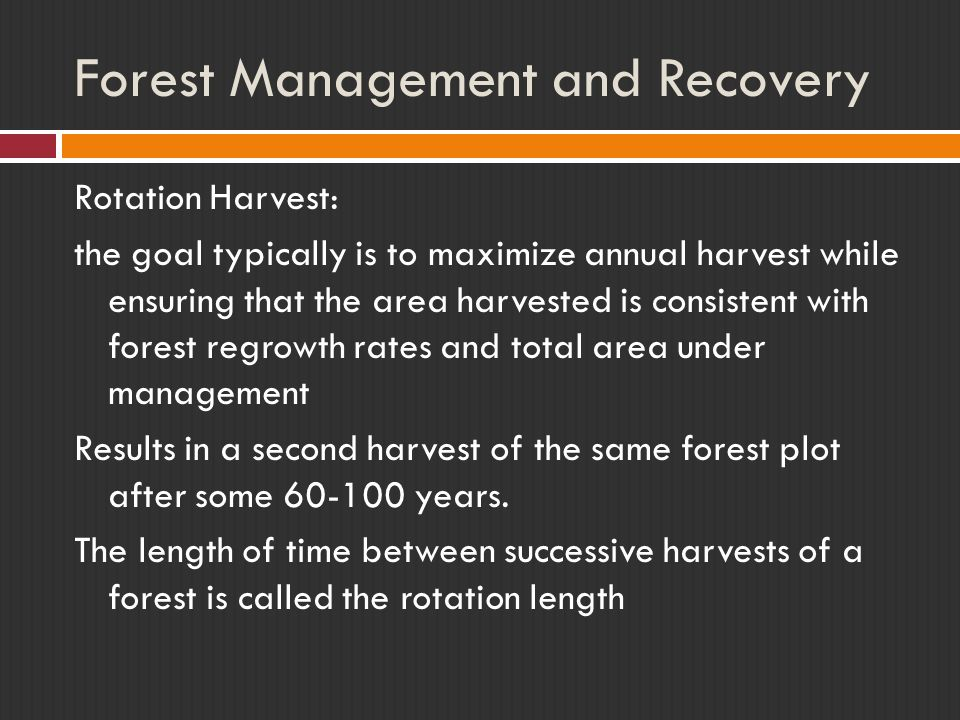 Forest Management and Recovery