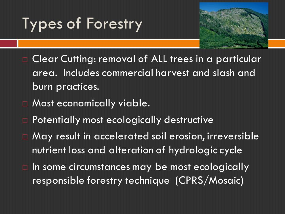 Types of Forestry Clear Cutting: removal of ALL trees in a particular area. Includes commercial harvest and slash and burn practices.