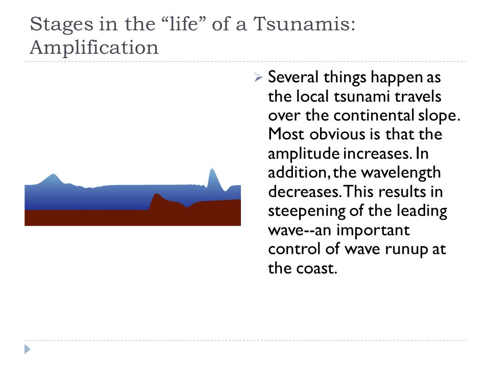 Stages in the life of a Tsunamis: Amplification