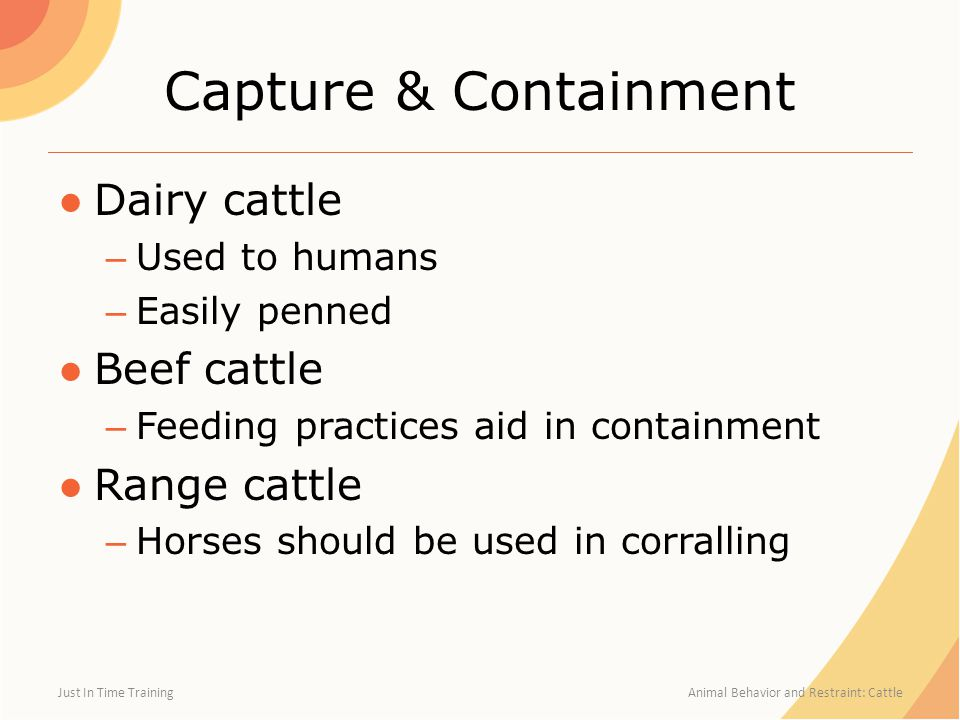 Capture & Containment Dairy cattle Beef cattle Range cattle
