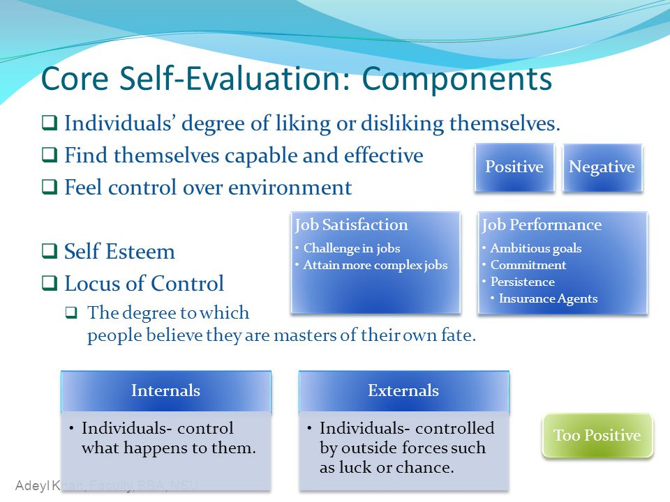Core Self-Evaluation: Components