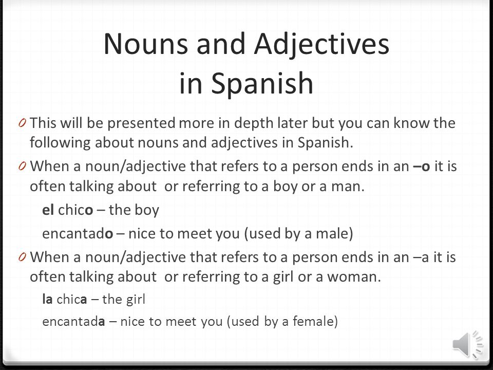 Nouns and Adjectives in Spanish