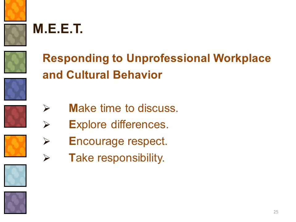 M.E.E.T. Responding to Unprofessional Workplace and Cultural Behavior
