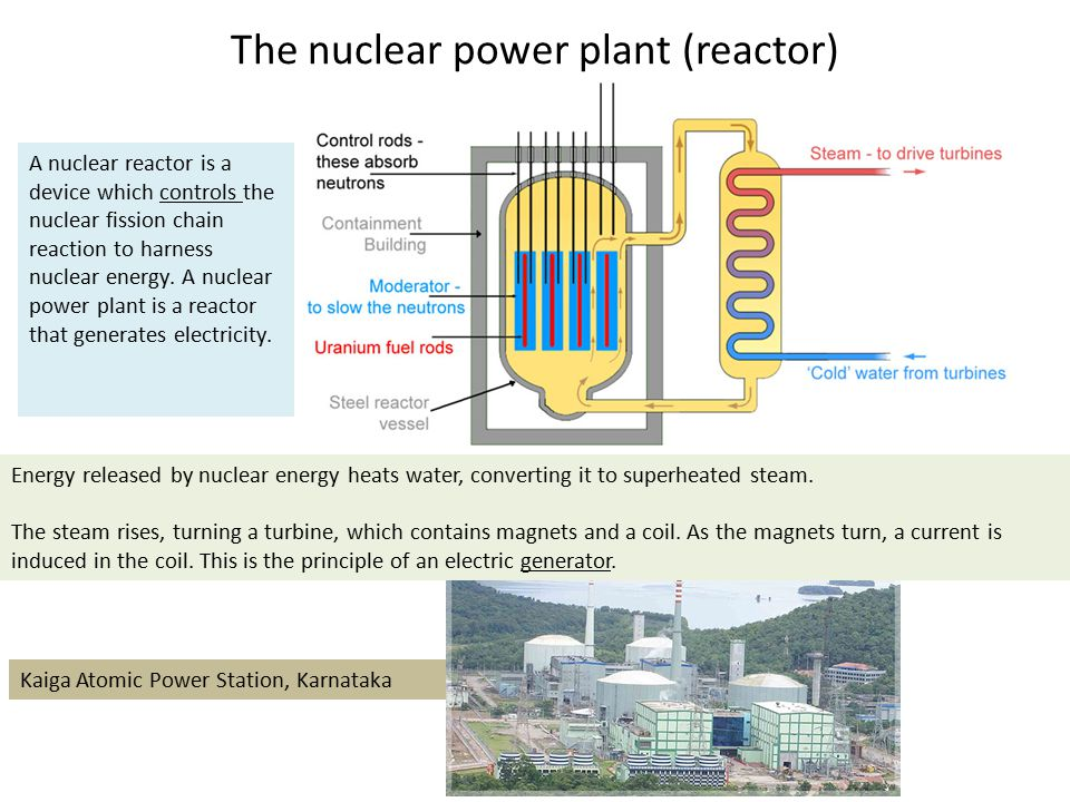 The nuclear power plant (reactor)