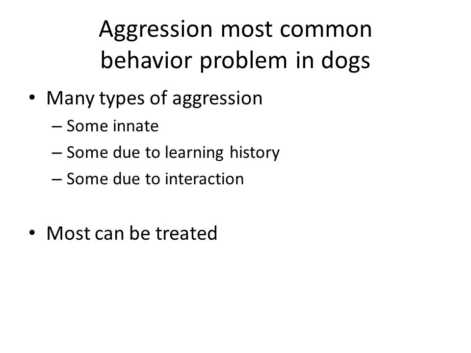 Aggression most common behavior problem in dogs