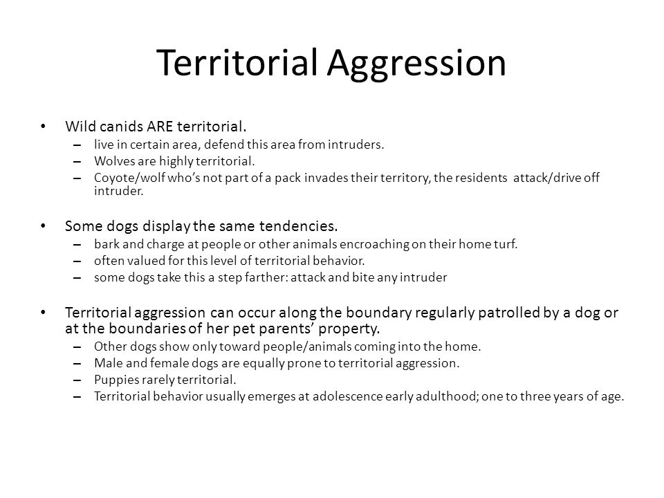 Territorial Aggression