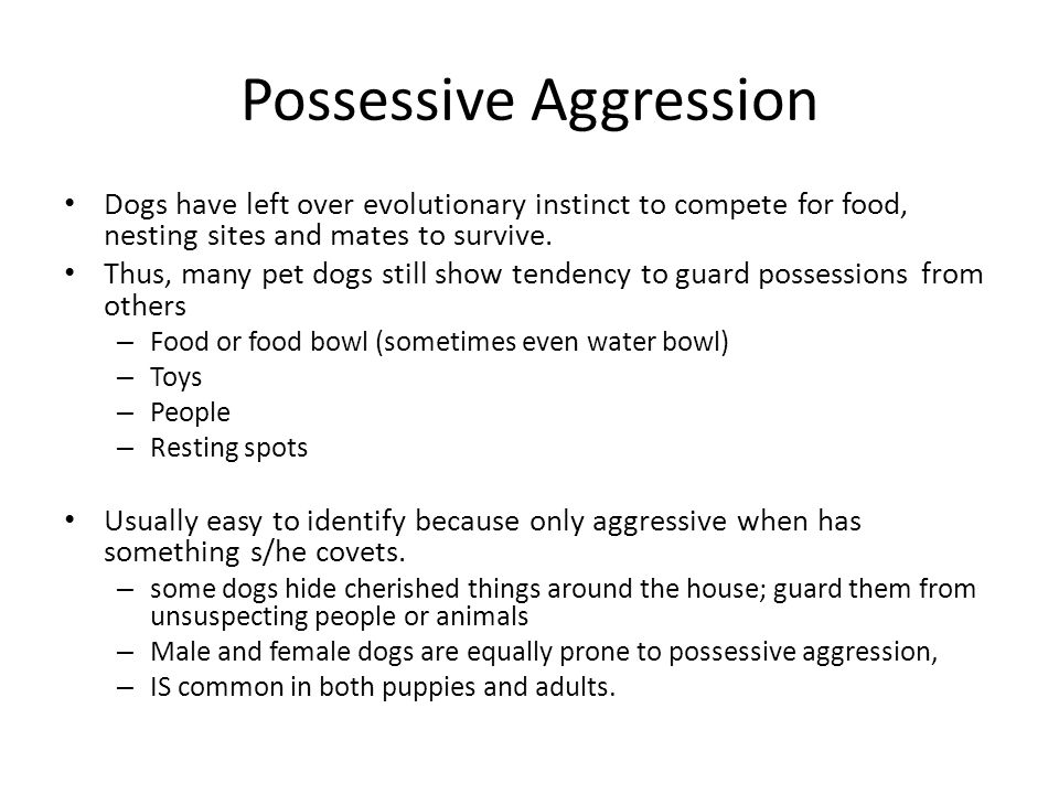 Possessive Aggression
