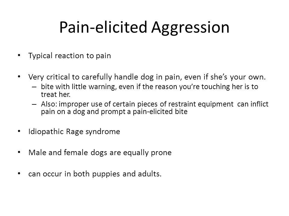Pain-elicited Aggression
