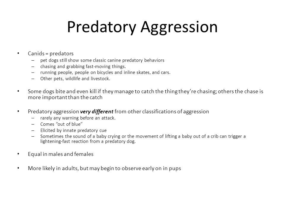 Predatory Aggression Canids = predators
