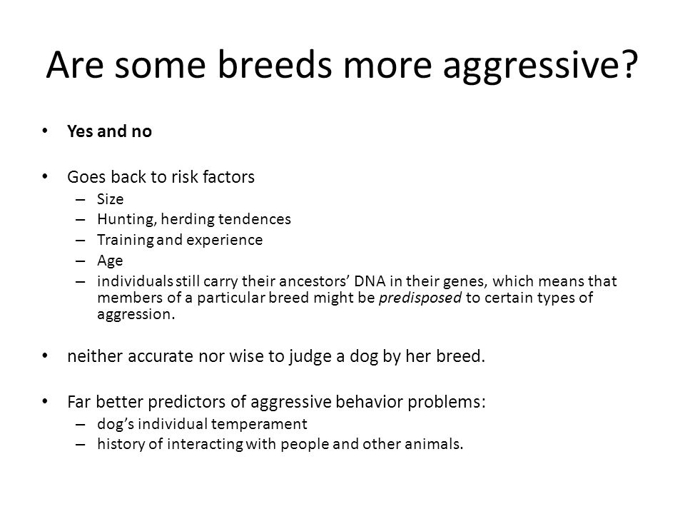Are some breeds more aggressive