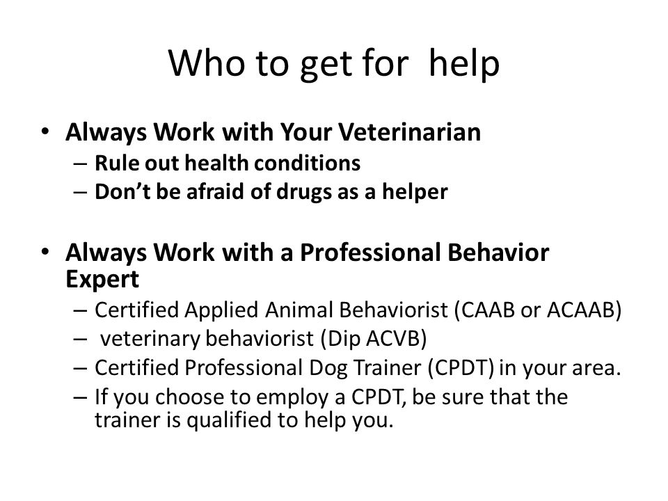 Who to get for help Always Work with Your Veterinarian