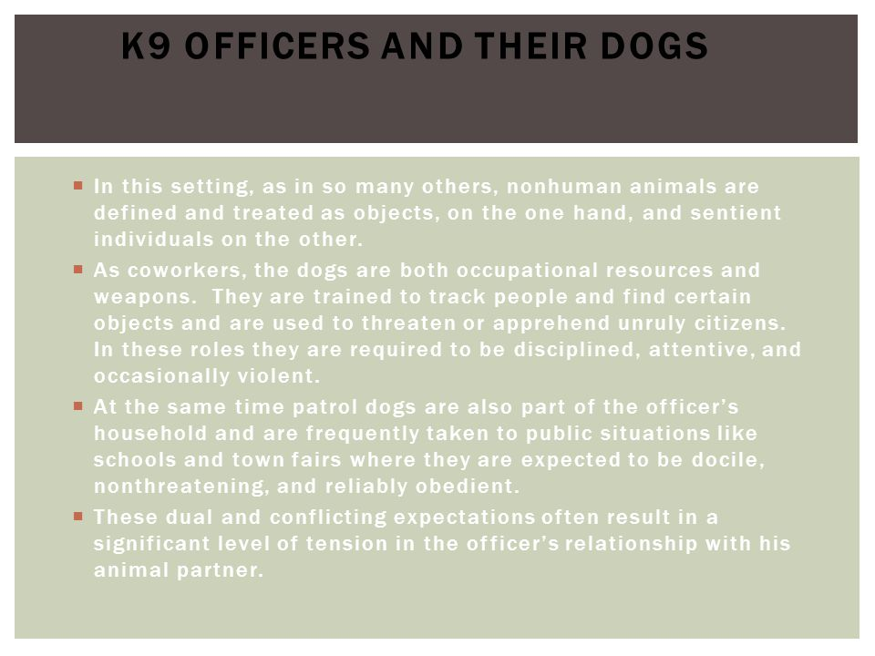 K9 Officers and their Dogs