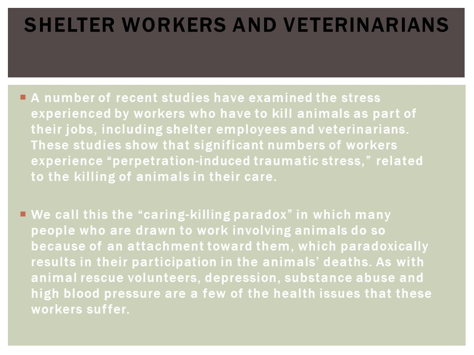 Shelter Workers and Veterinarians