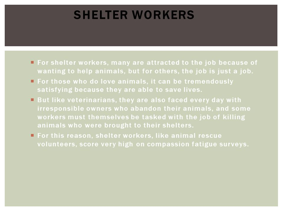 Shelter Workers For shelter workers, many are attracted to the job because of wanting to help animals, but for others, the job is just a job.