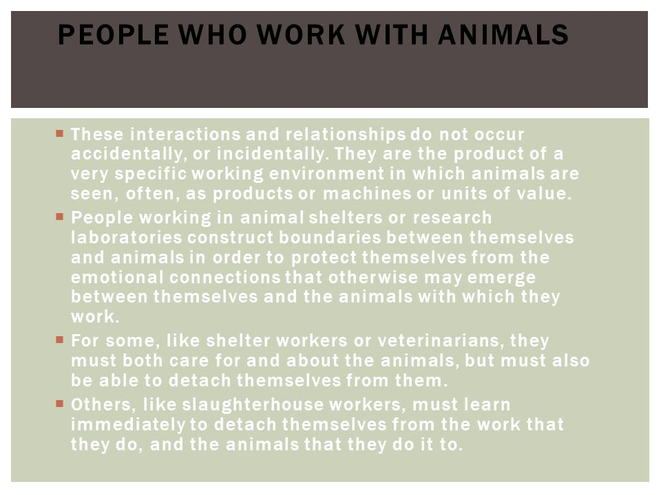 People who work with animals
