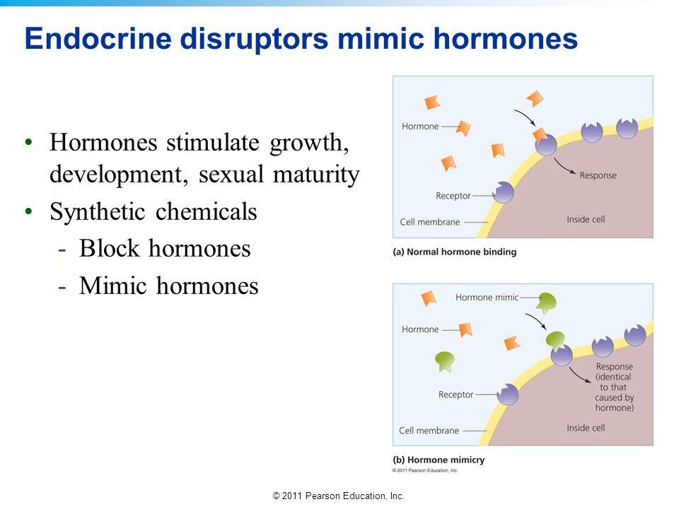 Endocrine disruptors mimic hormones