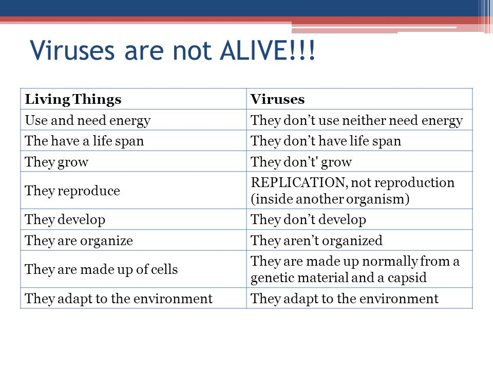 Viruses are not ALIVE!!! Living Things Viruses Use and need energy