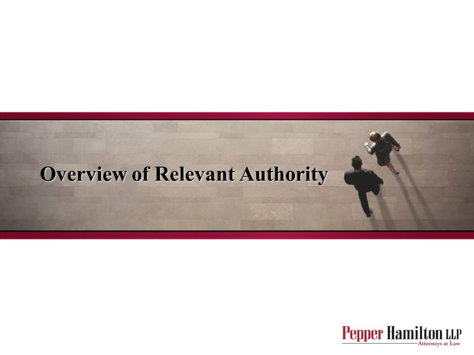 Overview of Relevant Authority