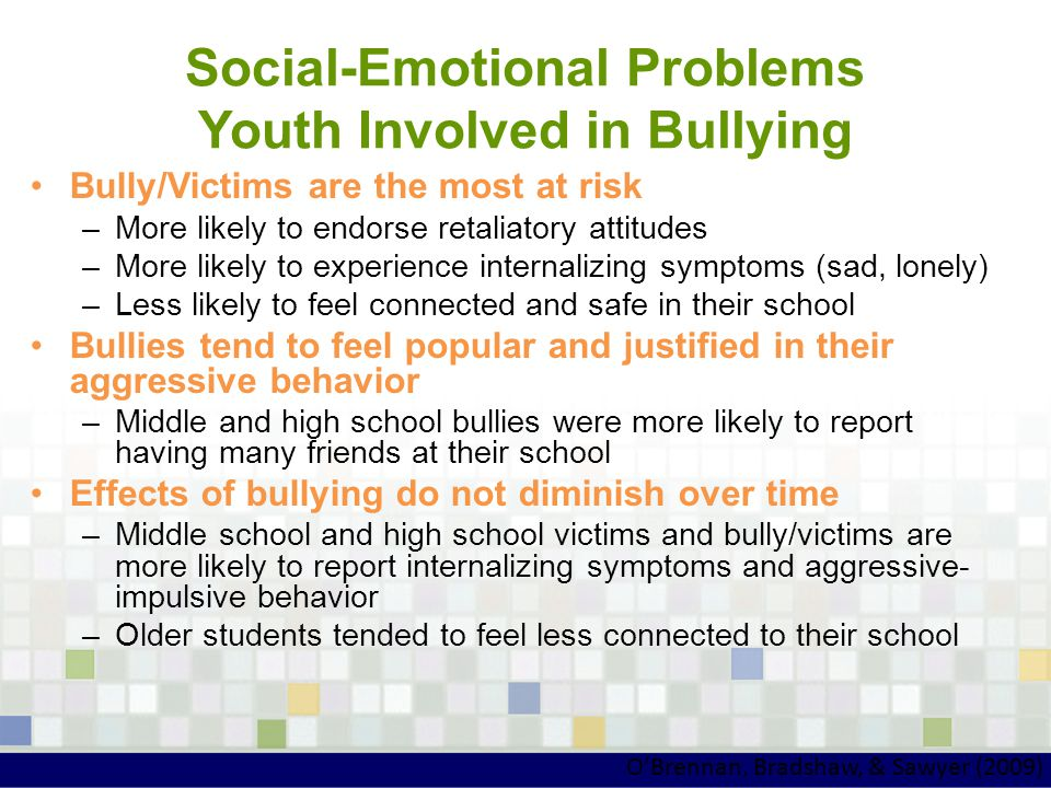 Social-Emotional Problems Youth Involved in Bullying