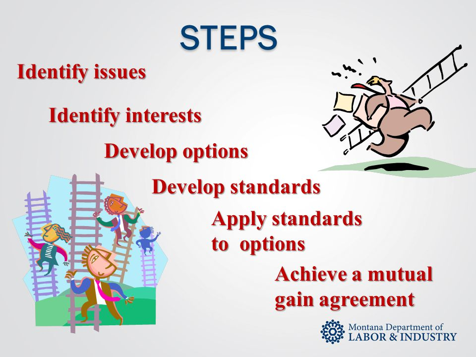 STEPS Identify issues Identify interests Develop options