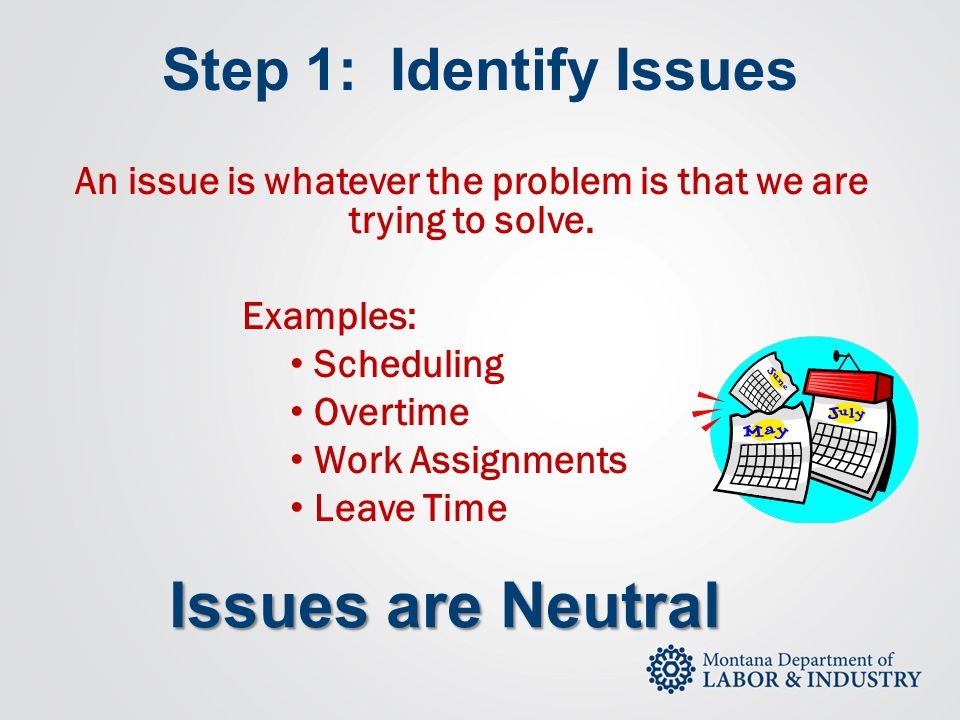 An issue is whatever the problem is that we are trying to solve.