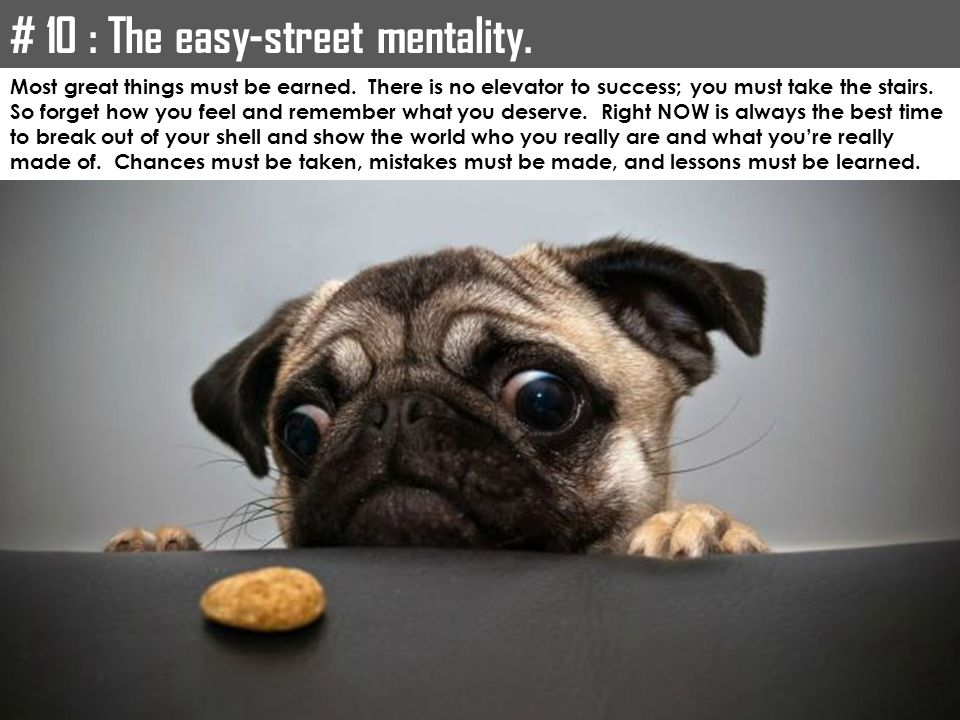 # 10 : The easy-street mentality.