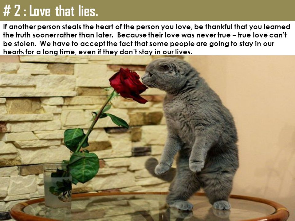 # 2 : Love that lies. If another person steals the heart of the person you love, be thankful that you learned.