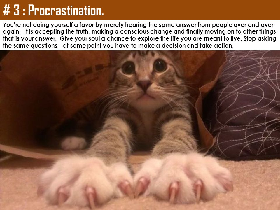 # 3 : Procrastination. You're not doing yourself a favor by merely hearing the same answer from people over and over.