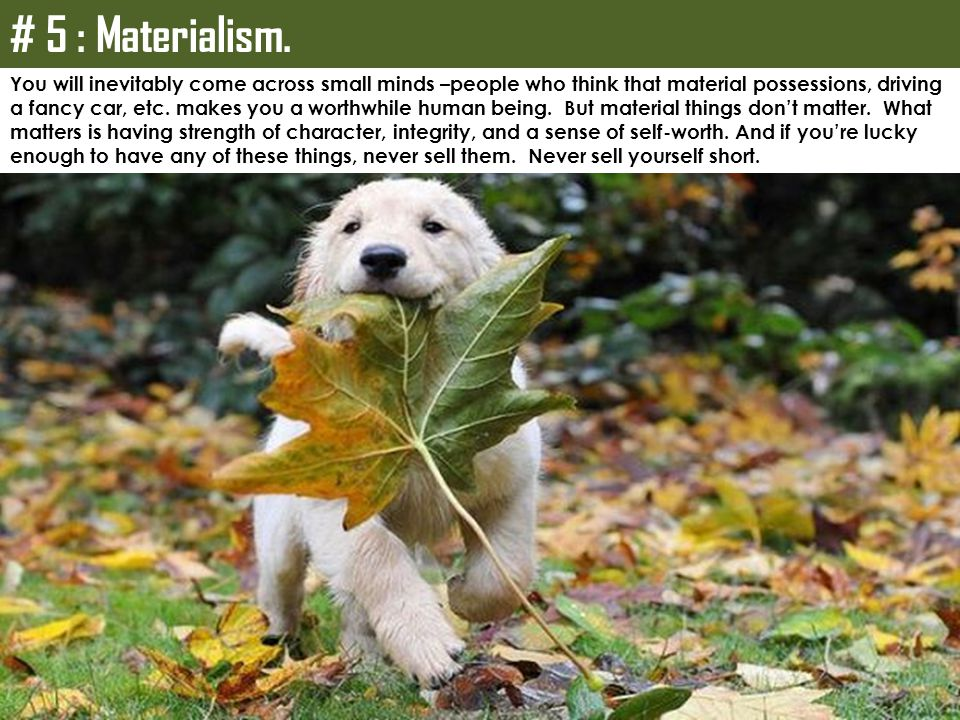 # 5 : Materialism. You will inevitably come across small minds –people who think that material possessions, driving.