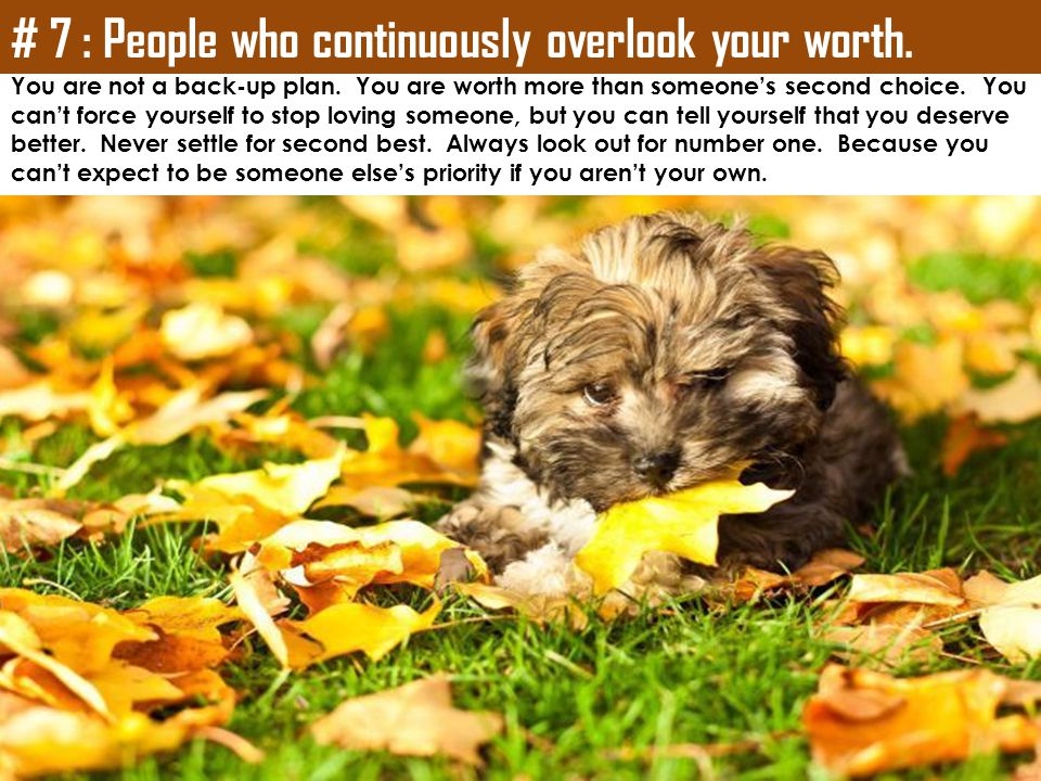 # 7 : People who continuously overlook your worth.