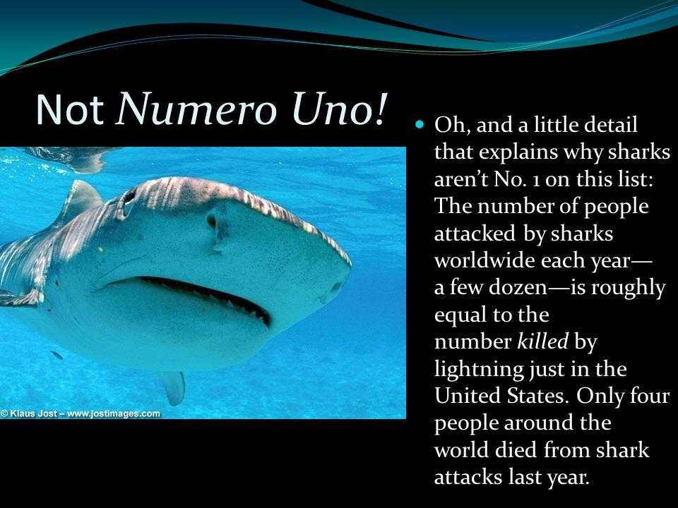 Not Numero Uno!