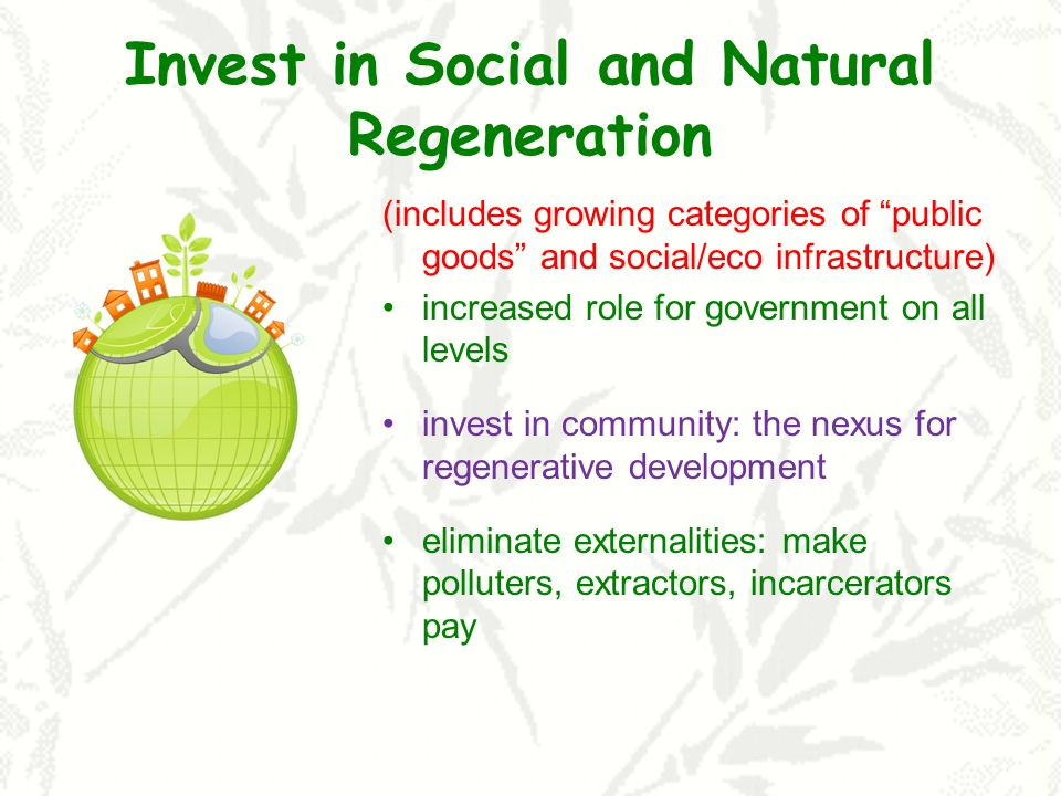 Invest in Social and Natural Regeneration