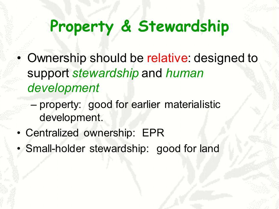 Property & Stewardship