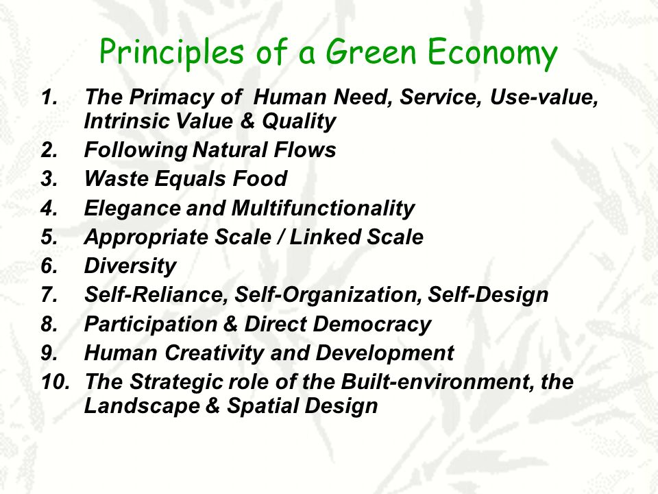 Principles of a Green Economy