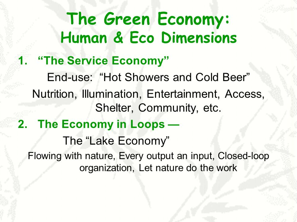 The Green Economy: Human & Eco Dimensions