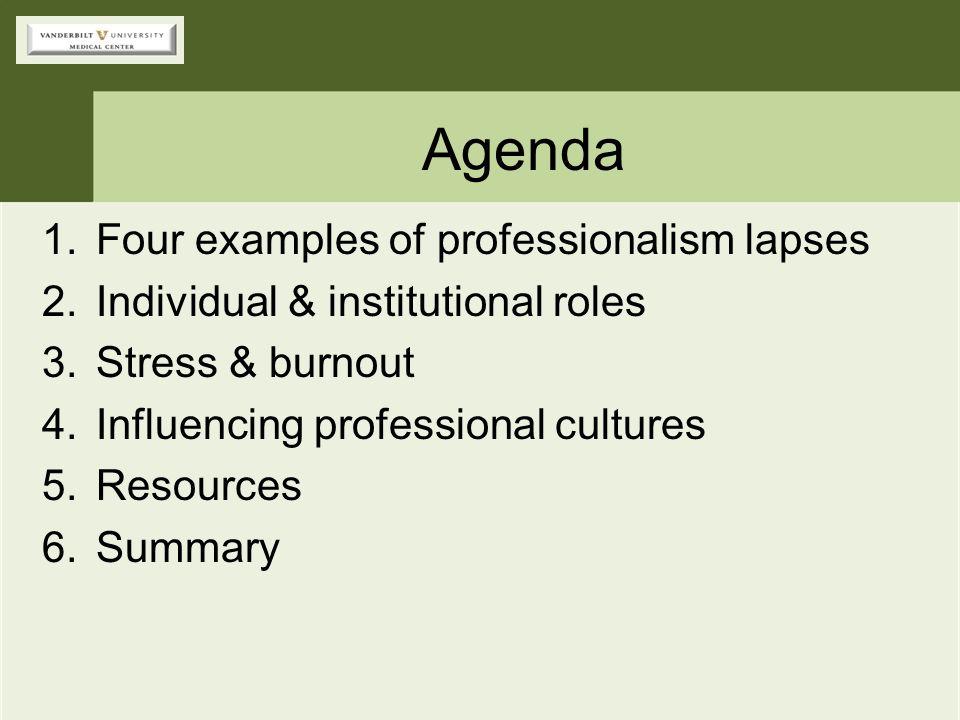 Agenda Four examples of professionalism lapses