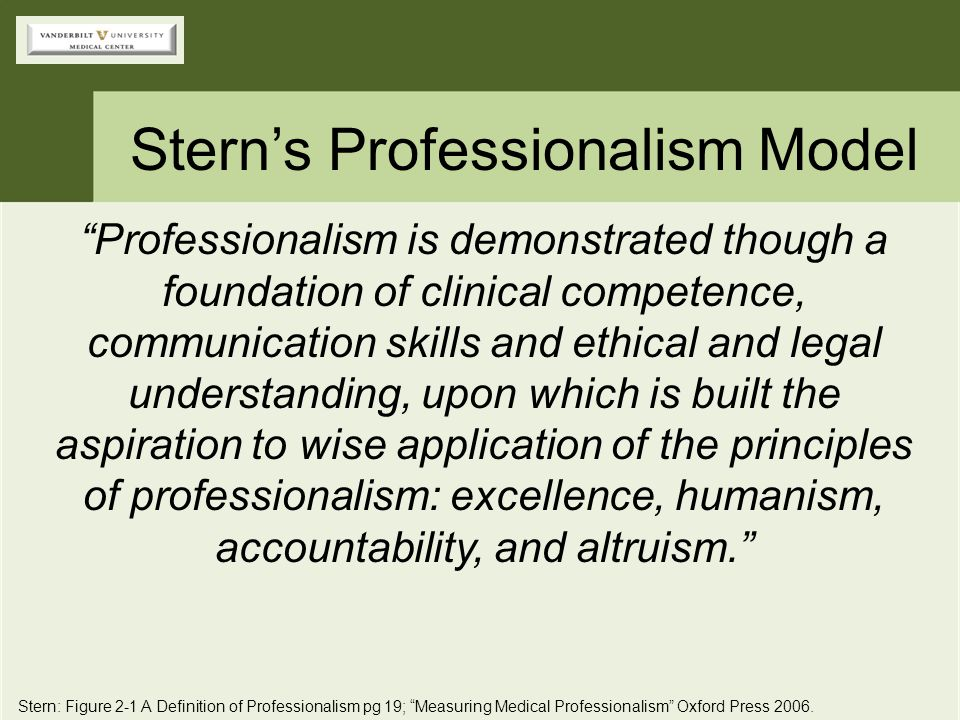 Stern's Professionalism Model