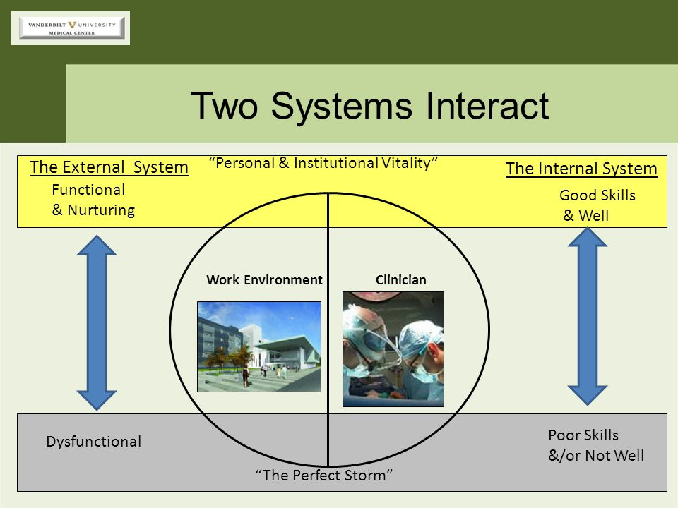 Two Systems Interact The External System The Internal System