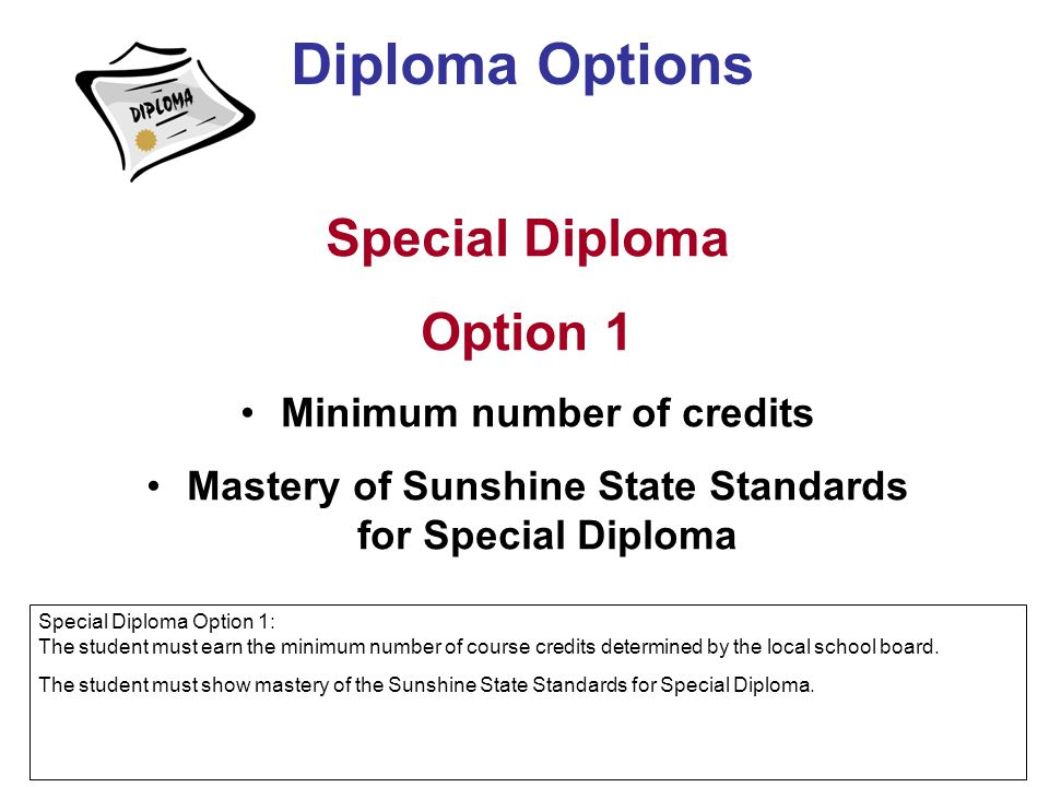 Diploma Options Special Diploma Option 1 Minimum number of credits