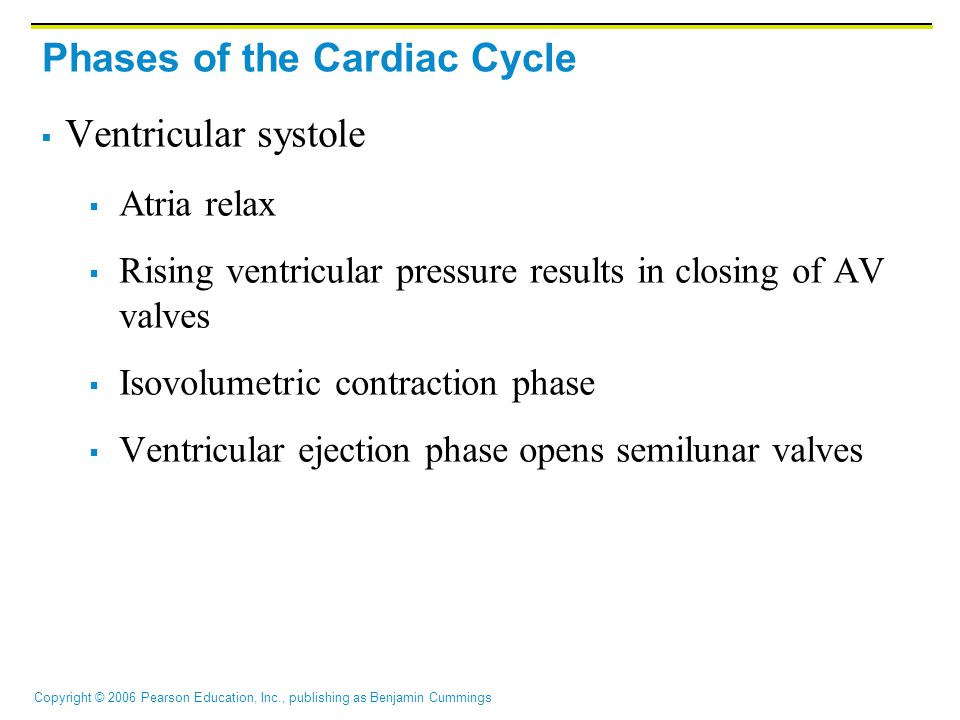 Phases of the Cardiac Cycle